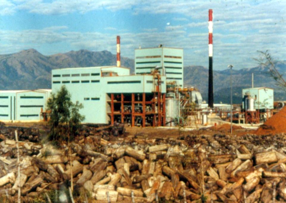 logging02